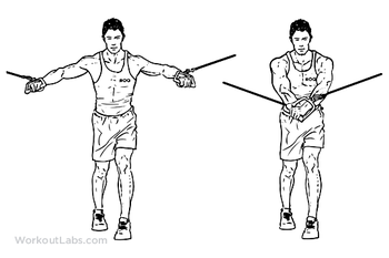 Standing_Cable_Fly_M_WorkoutLabs.thumb.png.833a32687baad69c439efd3bd2986429.png